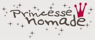logo-princesse-nomade-vetement-latribudistrib.com