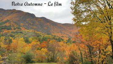 Notre automne – Le film